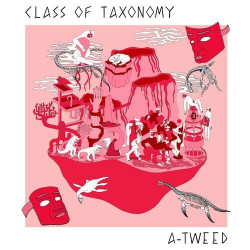 Class Of Taxonomy